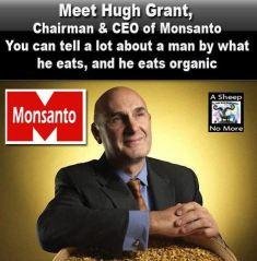 Monsanto CEO