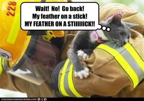 cat_fireman